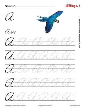 Spanish Alphabet Letter Formation Practice Worksheets Reading A Z AZ Reading Standards Alphabet Zaner Bloser Style Practice Sheets